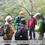 kokuyurin20131102