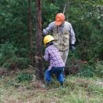 伐採体験_2016_1009030