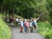 第146回森で遊ぶ会(蓮花寺池公園)の実施報告