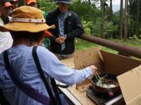 高山・市民の森 森林教室実施報告<山菜の天ぷら>