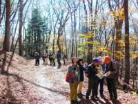 【写真】H29国有林見学会自然観察 (29)