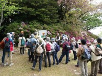 第153回・森で遊ぶ会(谷津山)実施報告