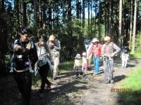 高山・市民の森 森林教室実施報告<ジグソーパズルづくり>
