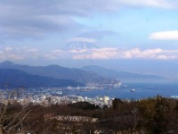 第159回・森で遊ぶ会(日本平・夢テラス)実施報告