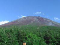 第163回・森で遊ぶ会(富士山お中道・奥庭)のご案内【このイベントは終了しました】