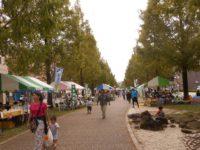 「浜松・花と緑の祭り」出展報告