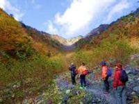 秋の自然観察会(大谷崩れ)実施報告