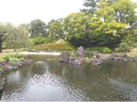 第178回・森で遊ぶ会(駿府城公園)のご案内